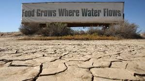 food grows where water flows drought sign