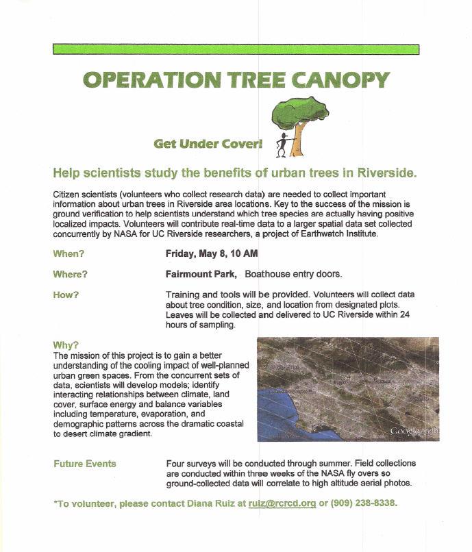 Operation Tree Canopy