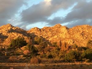 University Neighborhood Box Springs Mountains